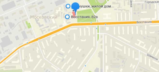 Органы опеки Кировского и Московского районов Казани