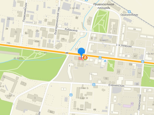 Отдел опеки и попечительства МО г. Ломоносов на Дворцовом проспекте