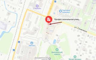 Органы опеки Дмитрова