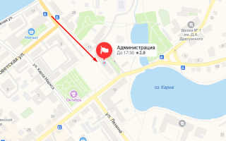 Органы опеки Новозыбкова