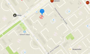 Органы опеки Заволжского района Ульяновска