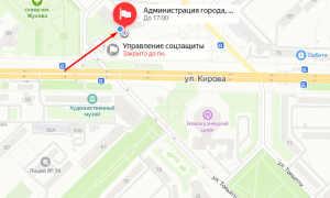 Органы опеки Новокузнецка