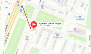 Органы опеки Сеймского округа Курска
