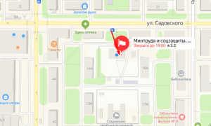 Органы опеки Новомосковска
