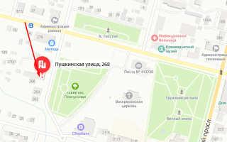 Органы опеки Пугачёва