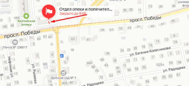 Органы опеки Калининграда